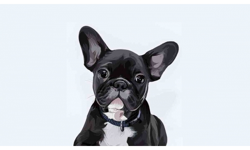 Welcome to Wonderful World of Digital Pet Painting and Portraits